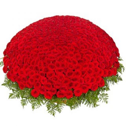 Купить на заказ 301  роза с доставкой в Зыряновске